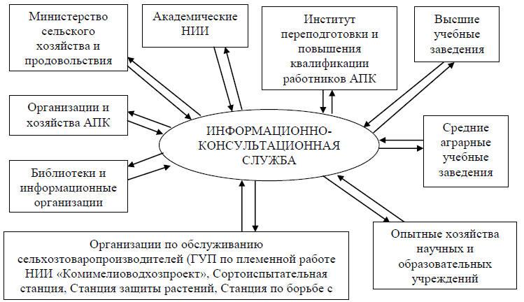 Взаимодействие региональной